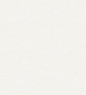 Madeira Texture 679068