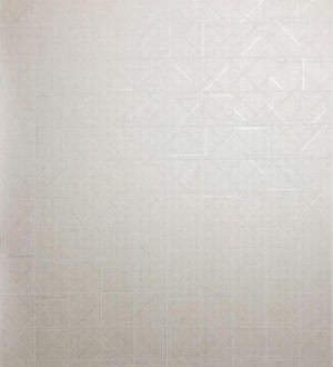 Papel pintado Atlas Wallcoverings Xplosion - 591-2 | 5912