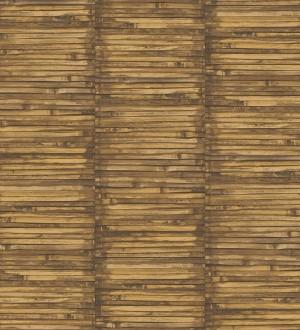Coimbra Wood