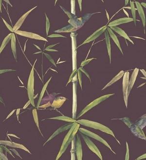 Papel pintado tropical con pájaros y hojas fondo oscuro Guinea Tropical 124173