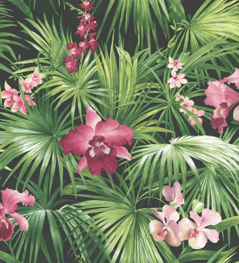 Papel pintado hojas de la jungla dominicana verde y rosa Dominican Jungle 124198