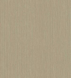Papel pintado Exclusive Wallcoverings Architecture FD25335