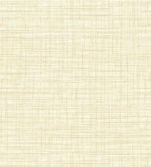Papel pintado fibra vegetal textura lisa Di Renzo 679386
