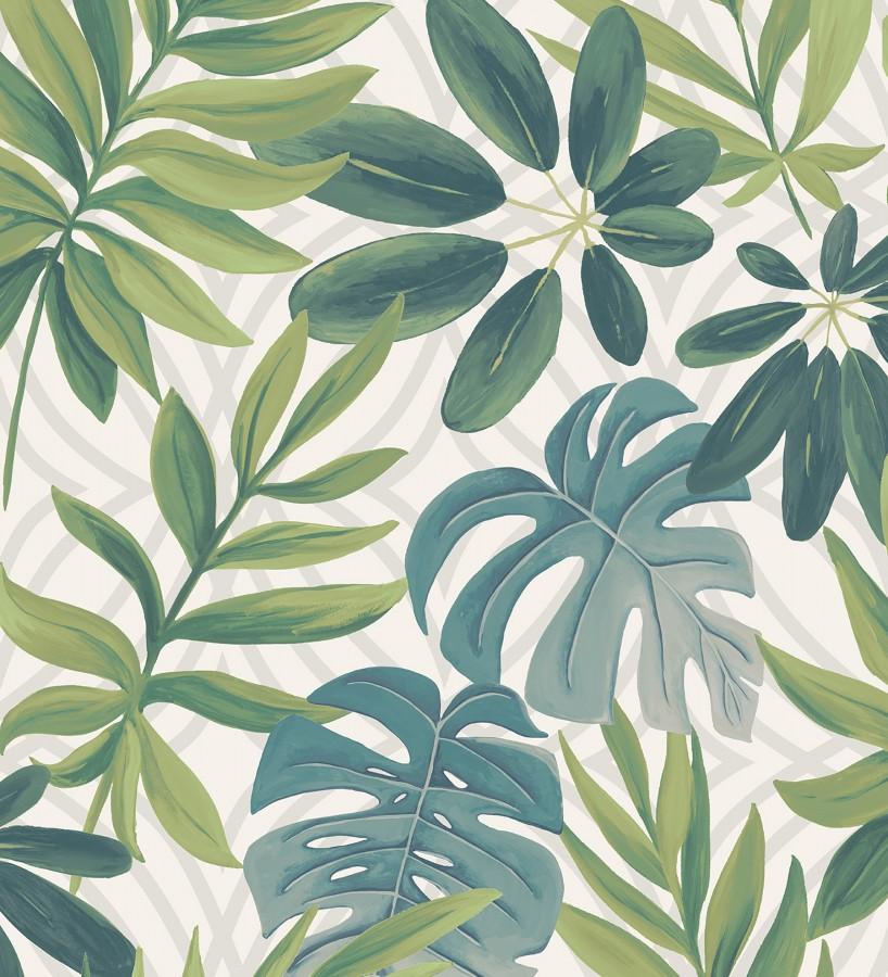 Papel pintado hojas grandes de monstera verde tropical Palm Springs 679451