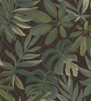 Papel pintado hojas grandes de monstera verde y marrón tropical Palm Springs 679453