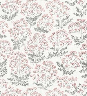Glasgow Flowers 680698