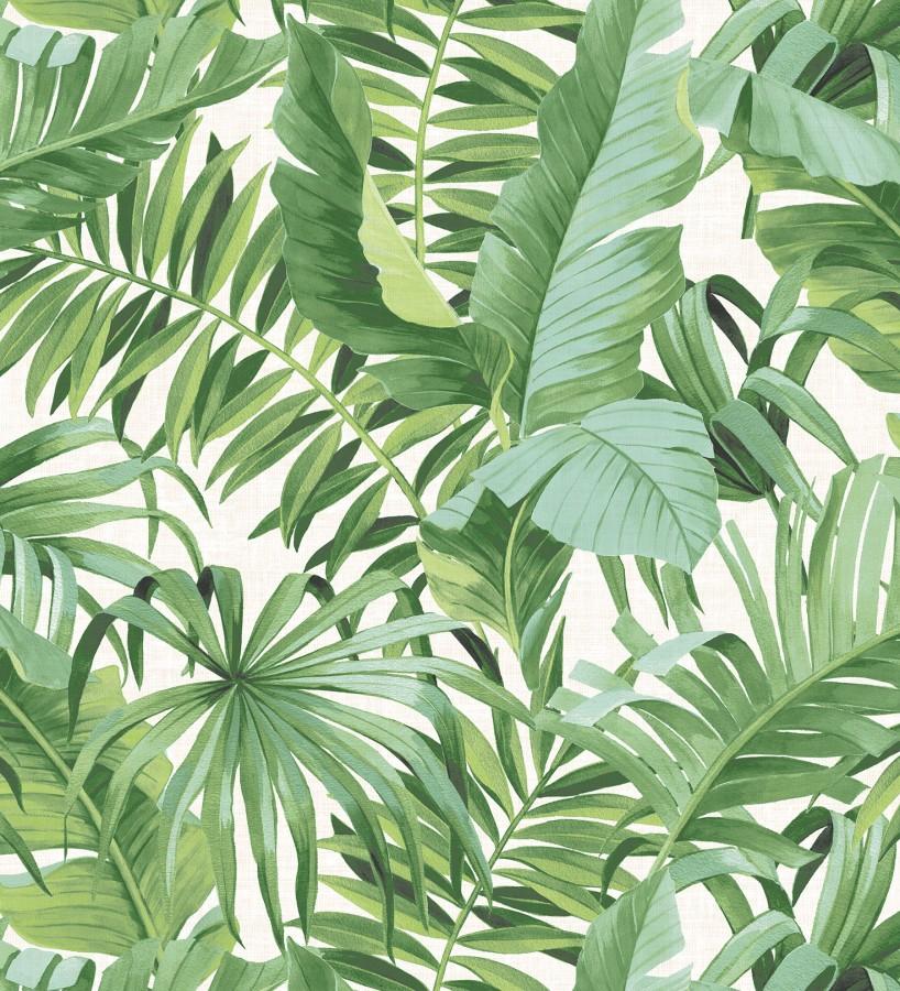 Papel pintado de hojas tropicales verdes Palm Beach 680754