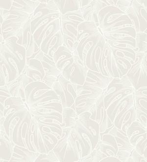 Papel pintado silueta hojas grandes de monstera en terciopelo blanco Palm River 680880