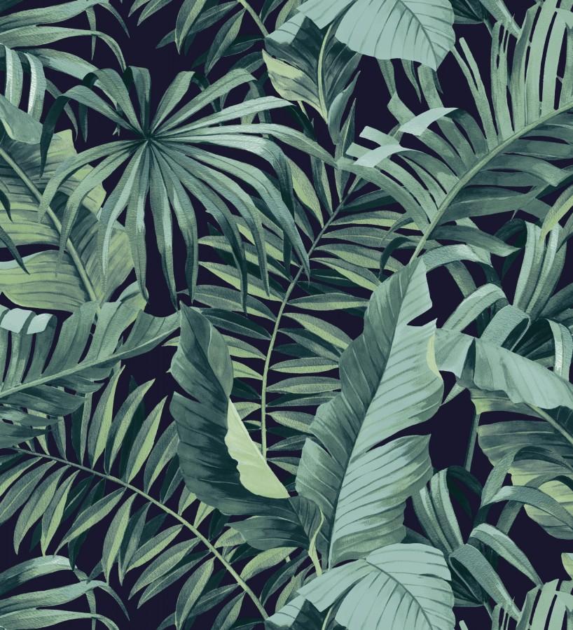 Papel pintado de hojas tropicales verde y negro Maldivas Tropical 680939