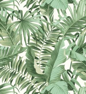 Papel pintado de hojas tropicales verde y blanco Maldivas Tropical 680938