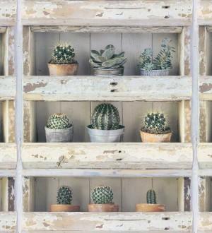 Papel pintado estantería con plantas de cactus Annie Plants 127133