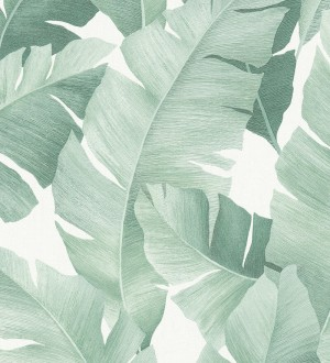 Papel pintado hojas grandes estilo tropical tonos verdes Florida Palms 127660