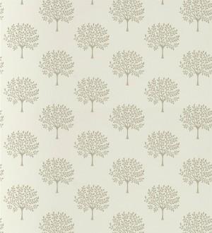Norway Trees 127798