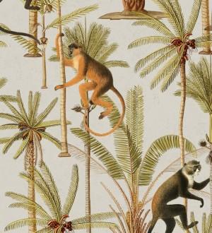 Monkey Padure 127932