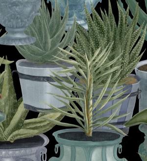 Papel pintado macetas grandes de cactus Gradinari 127934