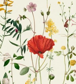 Papel pintado amapolas entre florecillas silvestres fondo claro Maci Blossom 127946