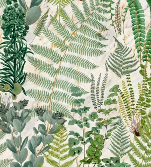 Papel pintado hojas de helecho fondo claro Feriga Forest 128083