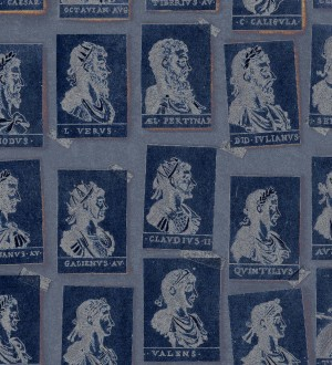 Papel pintado sellos de emperadores romanos tonos azules Emperor Legacy 128206