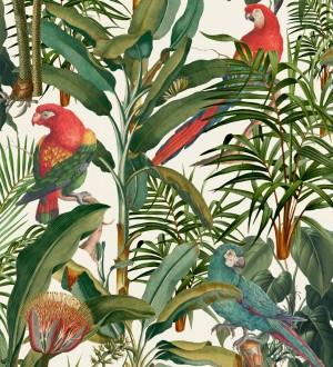 Papel pintado loros en las ramas de plantas tropicales fondo claro Cameron Island 128264