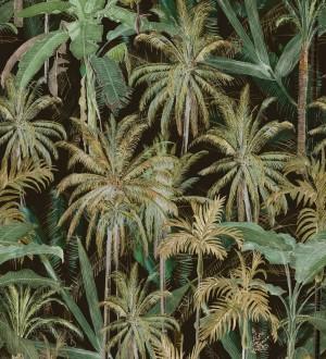 Papel pintado bosque de palmeras verdes y fondo oscuro Gordon Forest 128266