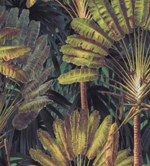 Papel pintado hojas tropicales fondo oscuro Tropical Fan 128269